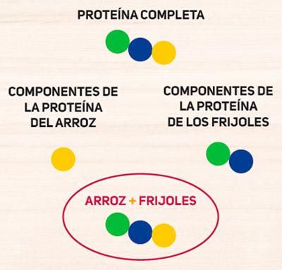 proteina-completa